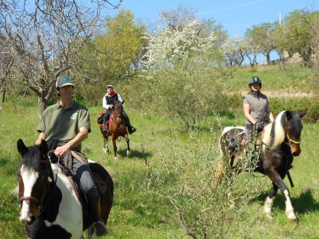 Passeggiata a cavallo guidata