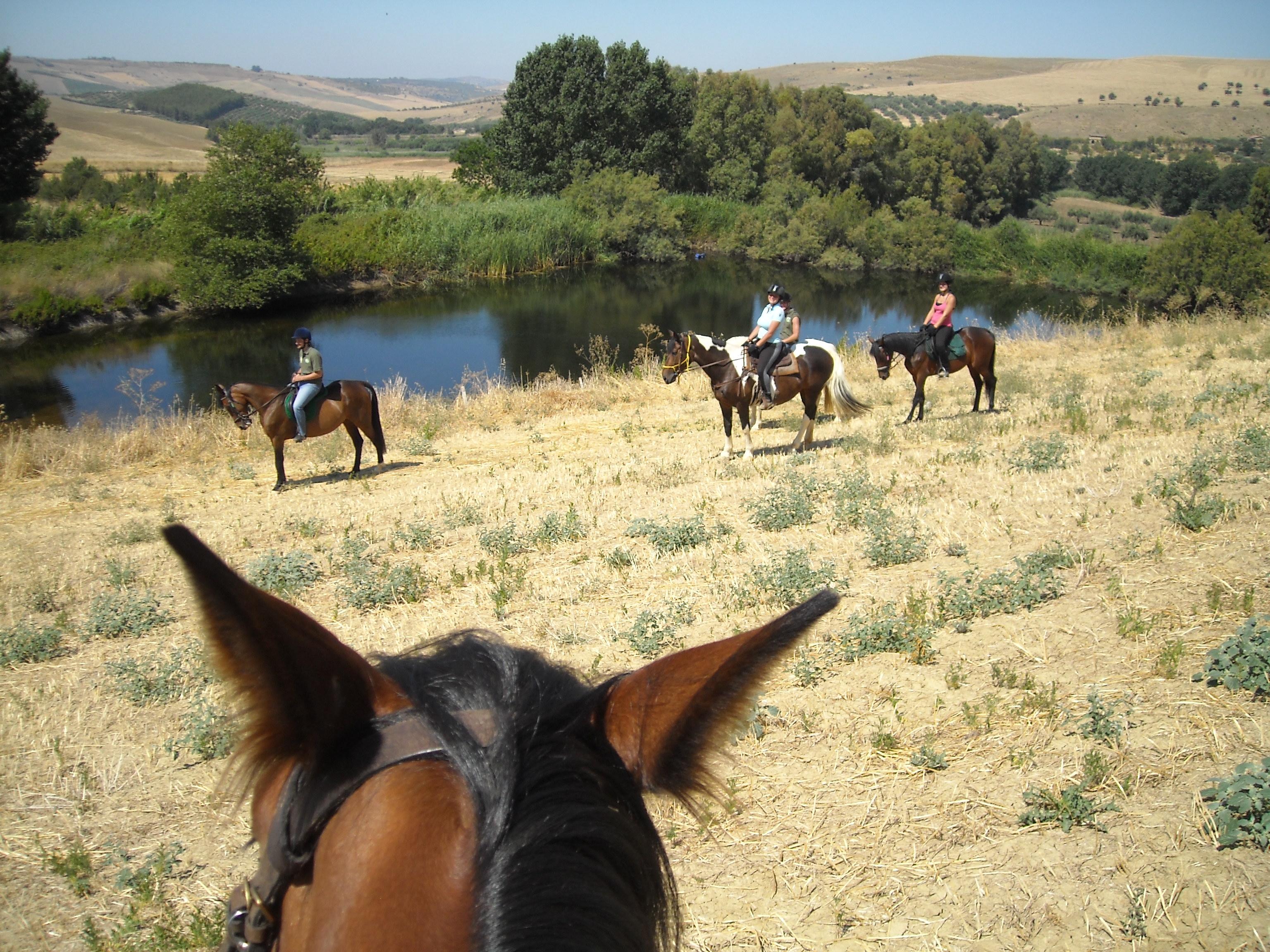 Passeggiata a cavallo al laghetto