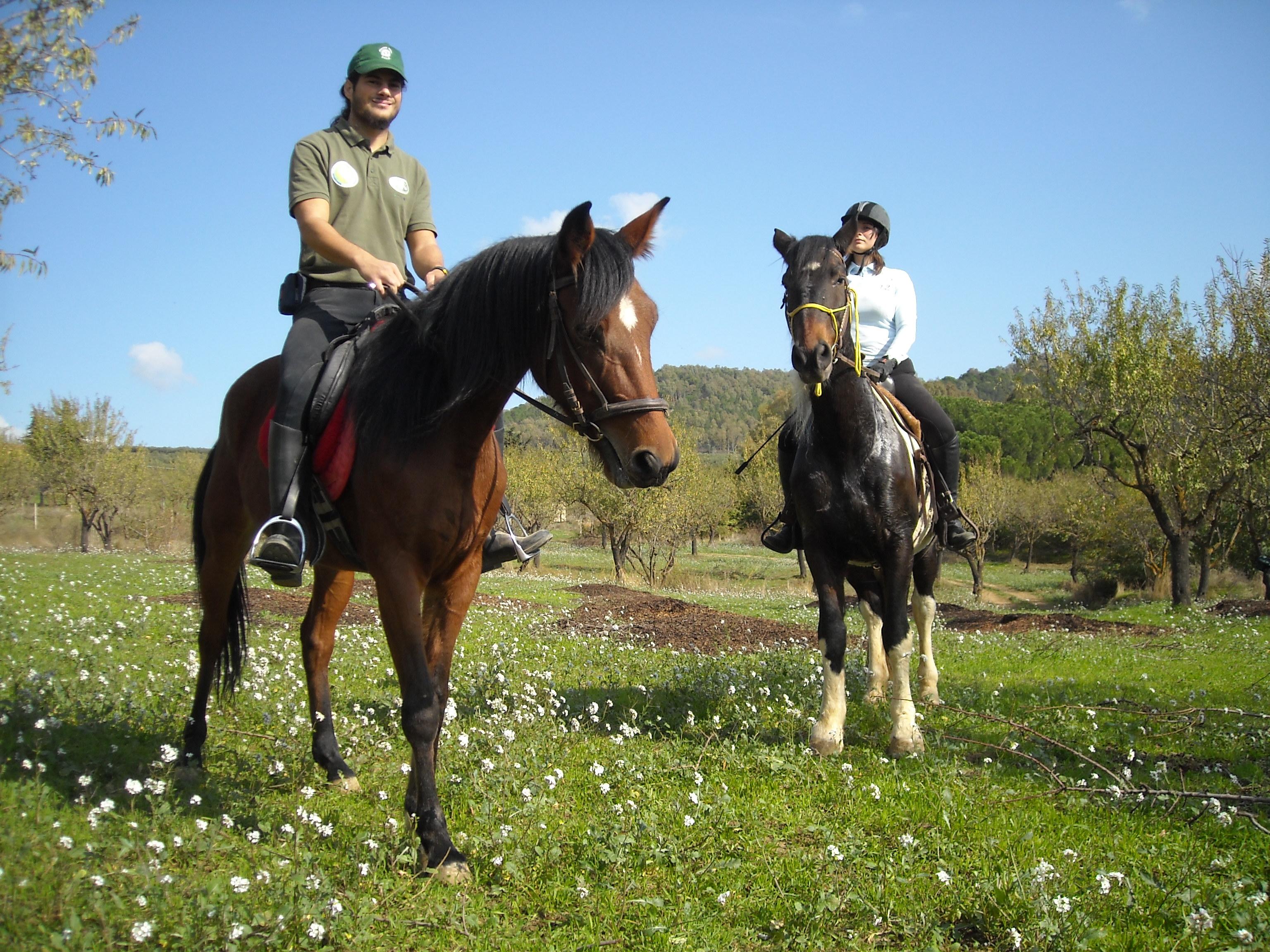 Escursione a cavallo al mandorleto